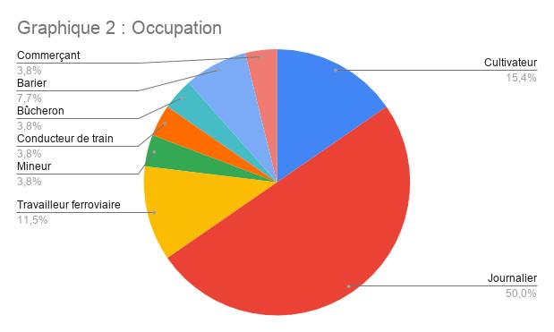 Graphique 2 _ Occupation
